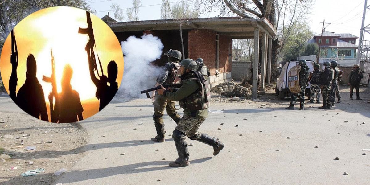 surrender by terrorist