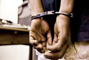 Palace operator taken into custody