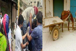Jalandhar: Horse car crushed Activa driver