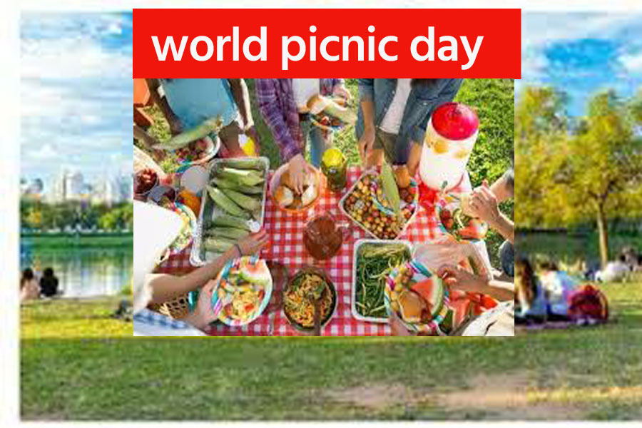 World Picnic Day: Why is this day celebrated