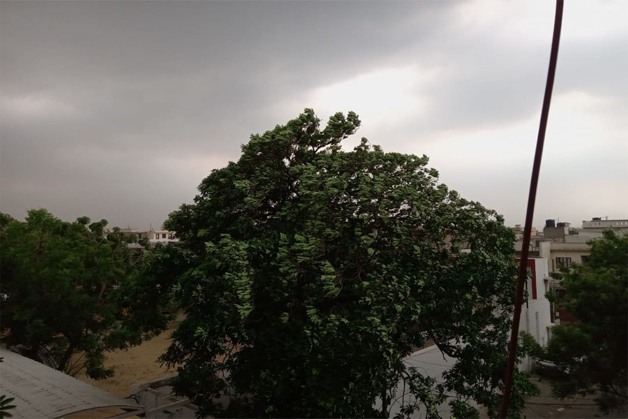 Jalandhar: Morning drizzle